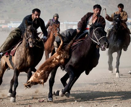 JANUARY 21: Afghan horsemen compete in the traditional game of Buzkashi in Kabul, Afghanistan. Buzkashi, which translates to 'goat grabbing,' is the national sport of Afghanistan. During this team sport players try to grab a headless goat carcass from the ground and pitch it into a scoring area. (Majid Saeedi/Getty Images)