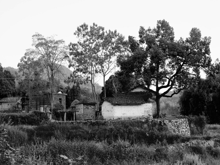 Beizhongzhen-village-in-Anhui-rural-China